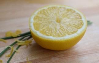 Katia Bernhard PR Marketing Obst Zitrone frisch