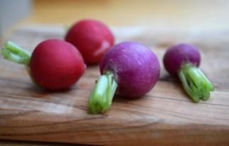 Katia Bernhard PR Marketing Gemüse frisch Radieschen